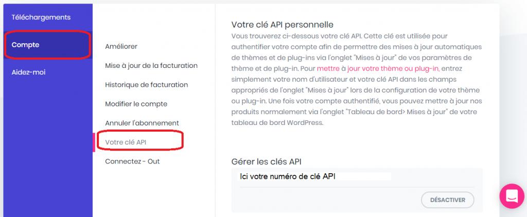 Installation de la clé API pour l'activation de la licence DIVI