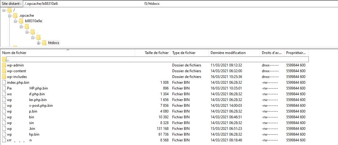 Fichiers générés par OPCache